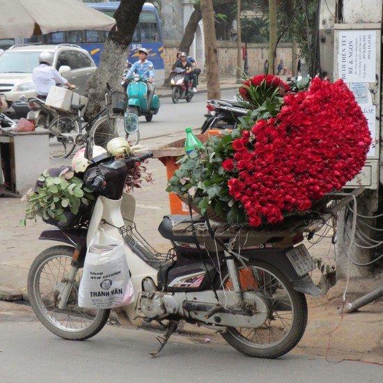 les roses d'orient... dans l'invité(e) libre photo-roses