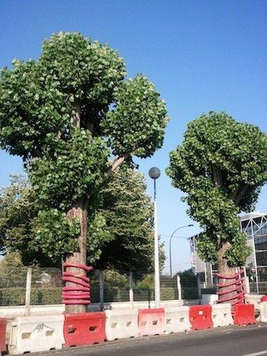 arbres girafes... dans mon été permanent wp_001005